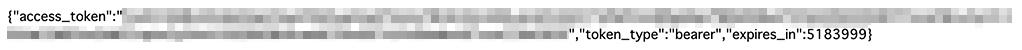 access-token_10.jpg